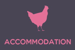 Hen Accommodation North Devon